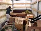 Ausstellung Siegelsbach 2002 - Aufbau_13