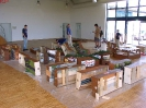 Ausstellung Siegelsbach 2002 - Aufbau_14